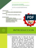 CAPITULO VI-ROCAS SEDIMENTARIAS.pptx