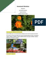 Inventario Florístico y MGentry, Word Para Astrid