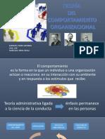 Presentación Toeria Comp Organizacional