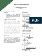 Informe Laboratorio Macromoleculas