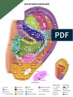 330966681-Mapa-Auricular.pdf