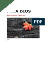 AcciondeGracias.docx