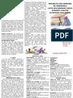 317697009-Triptico-Libro.pdf