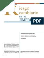 PDF Riesgo Cambiario(1)