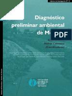 145_II13 Diagnostico moreno.pdf