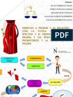 Derecho a Probar Ppt1