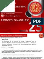 25-Nagalase