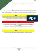 FE Cristalización de AdBlue en El Silenciador Catalítico, Regeneración