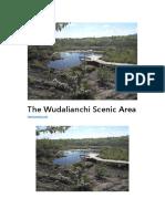 The Wudalianchi Scenic Area