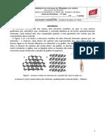 Ficha Formativa 1 - Minerais_paisagens