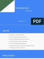 Testing big data