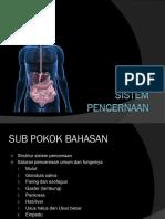 Sistem Pencernaan.ppt