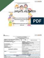 PROYECTO ARTISTICAS 4 DE JUNIO.docx