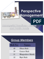 net Perspective Management