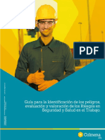 Guía virtual IPEVRv2.pdf