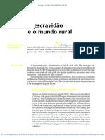 06 a Escravidao e o Mundo Rural
