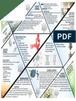 CONFORT_pdf.pdf