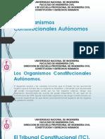 Constitución y DDHH.pptx