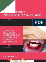 5. Propioceptores Periodontales y Mucosales (1)