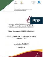 Economic_A_Bucur Rodica.docx
