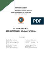 MAGISTRAL DESHIDRATACION