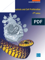 Apoptosis and Cell Proliferation