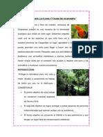 338621831-Cuidemos-La-Flora-y-Fauna-de-Oxapampa-Anthony.docx