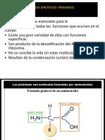 Proteinas y enzimas.pptx