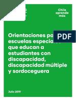 Orientaciones_EEspeciales