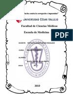 Historia Clinica Brayan 1