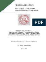 TDTS.pdf