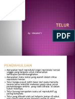 Defenisi, Struktur fisik dan kimia  Telur.pptx