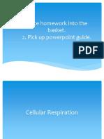 Lesson 6 Cellular Respiration1