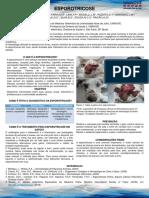 Esporotricose.pdf