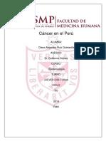 _Ruiz Diana - Cáncer en el Peru. docx (3)
