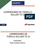 CAPACITACIÓN DE COMPRESORES DE TORNILLOS TS 32
