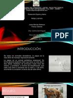 PRODUCCION EQUINA JUANA Y FRANCY.pptx