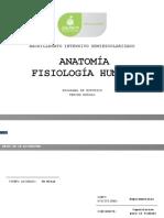Anatomia Fisiologia Humana 0