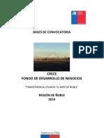 BASES-CRECE-LEVANTA-TU-MIPE-2019-Word-1.docx