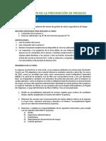 02_gestion de La Prevencion de Riesgos_tareaV1