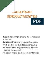 malefemalereproductivesystem3-161025064647.pdf