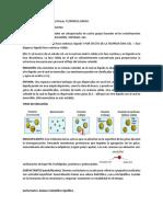 Resumen PEP 2 Propiedades Físicas