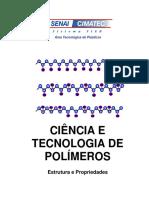 ciencia e tecnologia de polimeros
