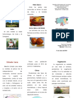 289025522-Triptico-Estado-Lara.docx