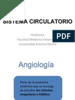 Angiología Parte 1