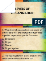 Levels of Organization Quiz
