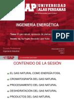 El Gas Natural-Operación y Procesamiento