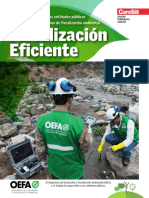 TVM - Fiscalización Eficiente.pdf