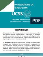 7. PERCEPCION