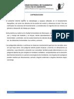 INFORME POLIGONAL ABIERTA.docx
